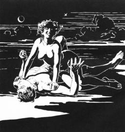 Vampir,_1899