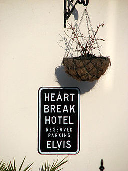 Elvis_at_the_Heart_Break_Hotel_-_geograph.org.uk_-_1147517
